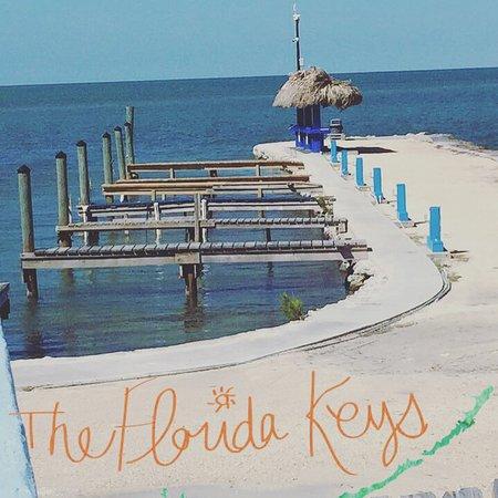 location photo direct link fiesta resort marina long florida keys
