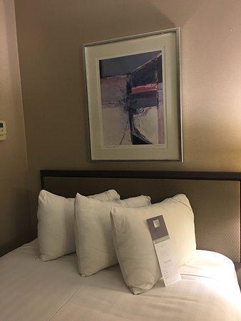阿布奎基君悅飯店照片