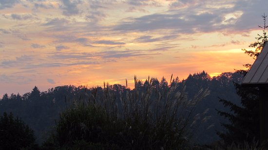 Youngberg Hill Vineyards & Inn: Sunset from the room