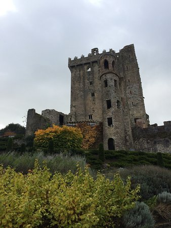 Blarney Castle: photo4.jpg