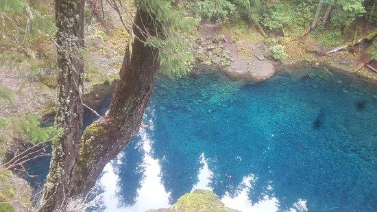 Tamolitch Blue Pool Trail: Tamolitch Pool Trail
