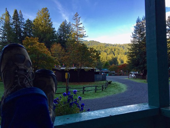 Redcrest Resort: Morning view from cabin #3.