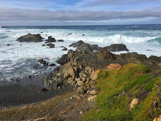 MacKerricher State Park: View from boardwalk at Laguna Point.
