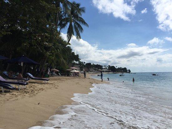 Holetown, Barbade : photo3.jpg