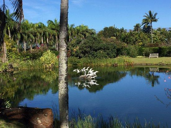 Kilauea, ฮาวาย: Lagoon with sculpture of flying gulls