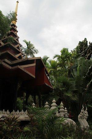 Lipa Noi, Tailândia: Гугл-координата 9.507929, 99.938629.