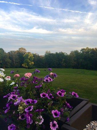 Lenox, Μασαχουσέτη: back garden