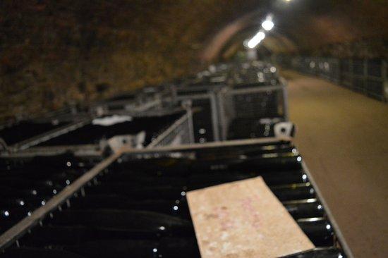 Lorch, Alemania: Vinhos bons e preços justos!!