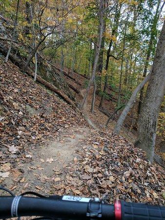 Ellicott City, MD: Cascade Trail