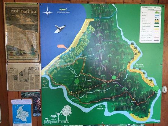 Jardín Botánico del Pacifico: photo9.jpg