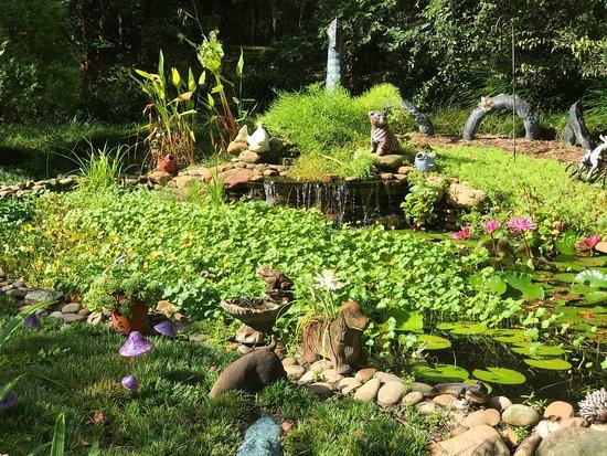 Kanapaha Botanical Gardens: Photo0