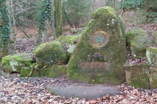 Wildpark Betzenberg