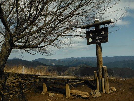Kanto, Japón: 棒ノ折山(頂上)