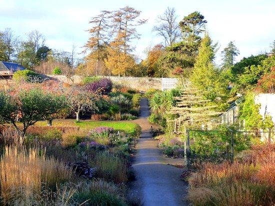 Kingsbarns, UK: Walled garden