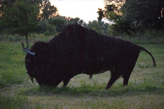 Gothenburg, NE: Barbed wire bison at sunset