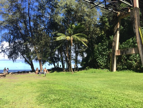 Hakalau Beach: grassy area in park