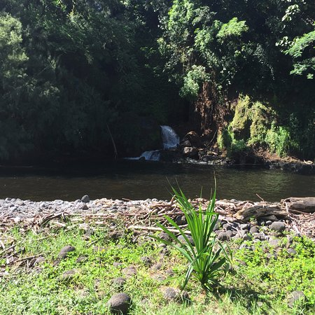 Hakalau Beach: stream that enters the bay