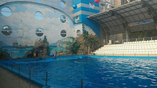 Харьковский дельфинарий