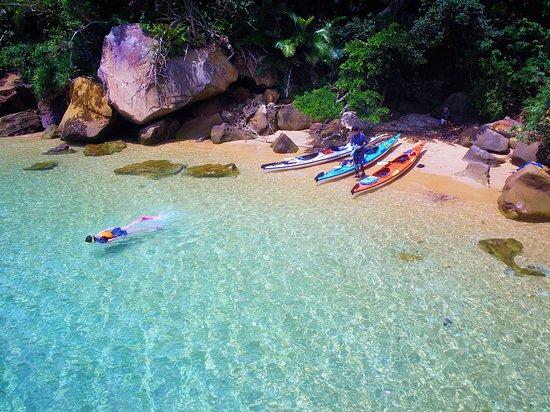 Iriomotejima Canoe Club Pisces