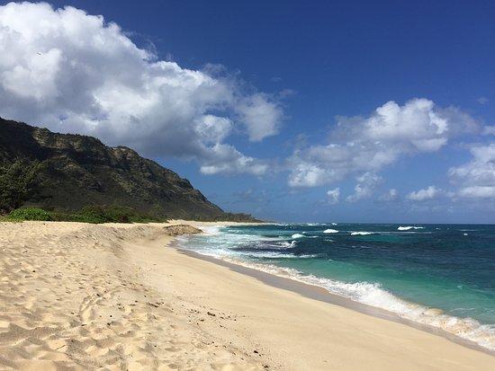 Waialua, HI: MokuleiaBeach
