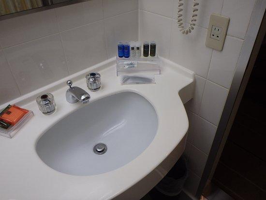 Tomisato, Japan: 洗面所
