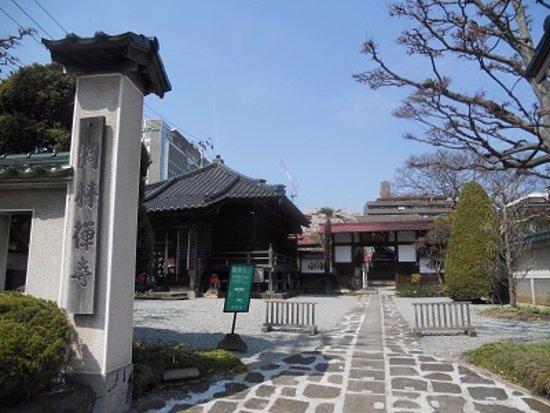 Torin-ji Temple: 洞林寺です