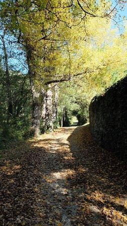 Province of Girona, إسبانيا: Tardor a Rocabruna