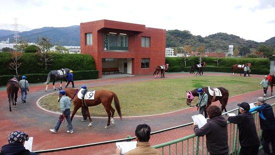 Tosu Photo