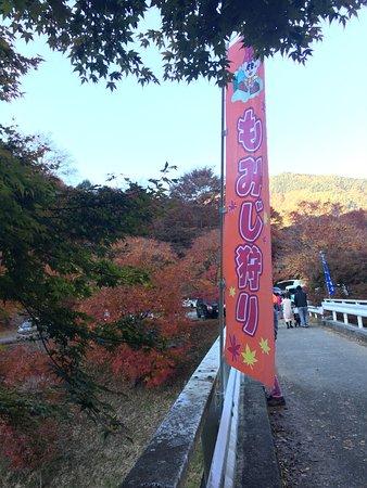 Bilde fra Minowa-machi