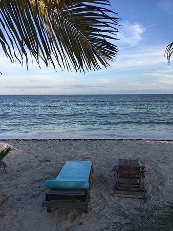 Mayan Beach Garden: November 2016