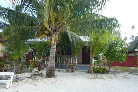 Tuamotu Archipelago, French Polynesia: Notre fare