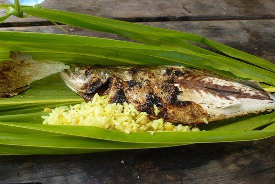 Tuamotu Archipelago, French Polynesia: Repas sur un motu