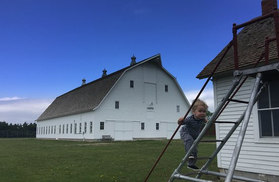 Prairie Museum of Art & History: barn- yes you can go inside