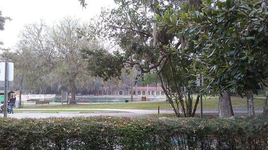 De Leon Springs, FL: 1113160921a_large.jpg