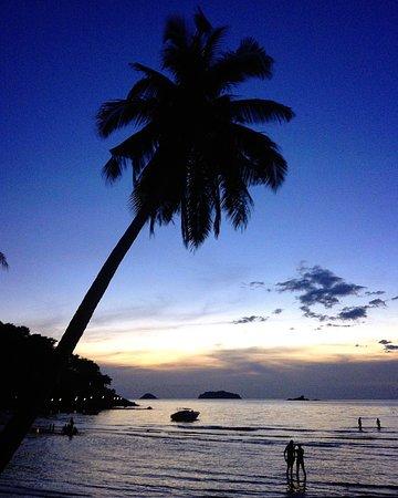 The Emerald Cove Koh Chang: IMG_20160216_082559_large.jpg