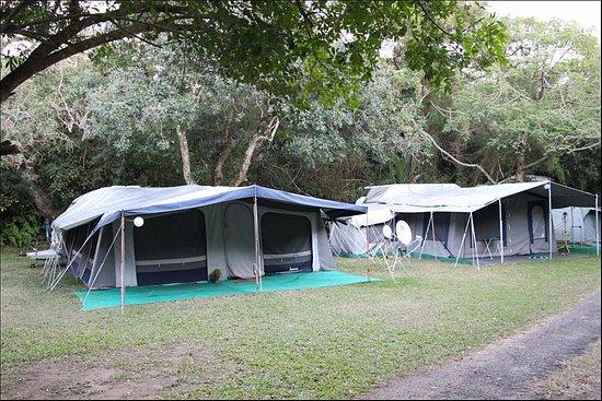 Site set up