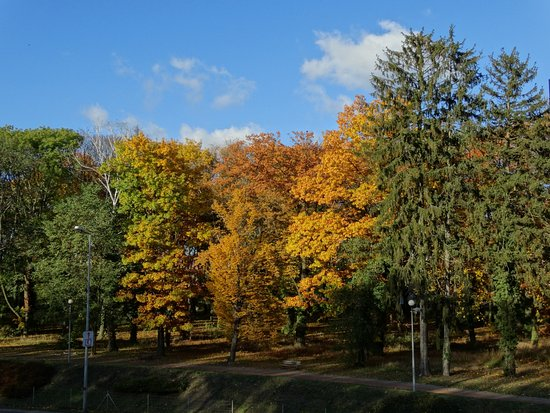 Park Siemiradzkiego