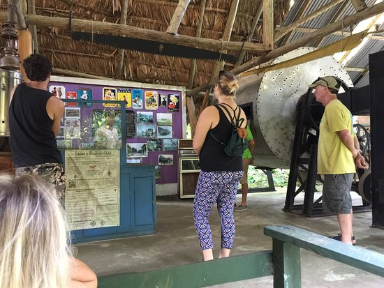 Hone Creek, Costa Rica: Learning about the history of chocolate