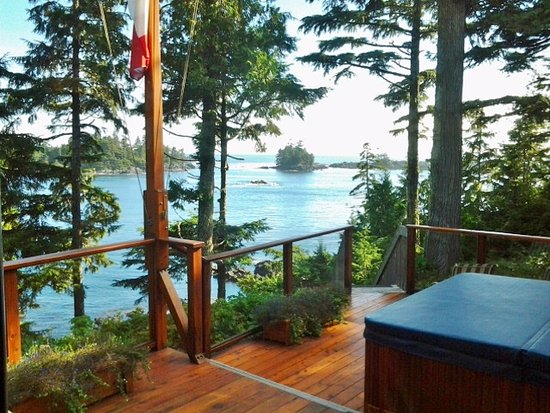 A Snug Harbour Inn: View from the Guest lounge