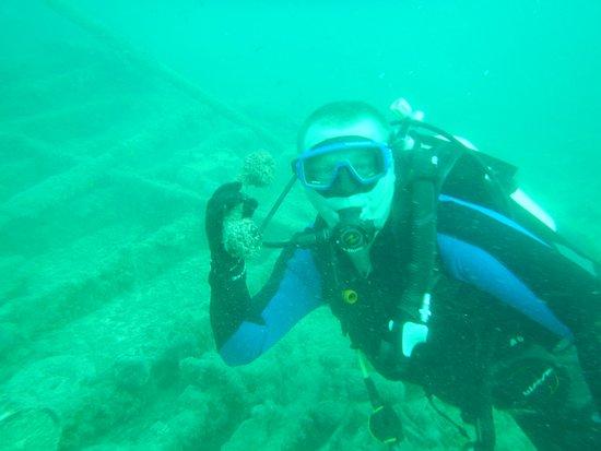 Dive Center: Blue Dolphin Djerba: Телефон цел но не работает, проверено.