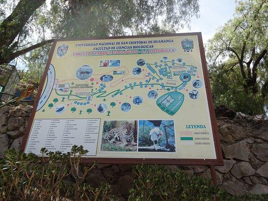 Ayacucho, Peru: Zoologico