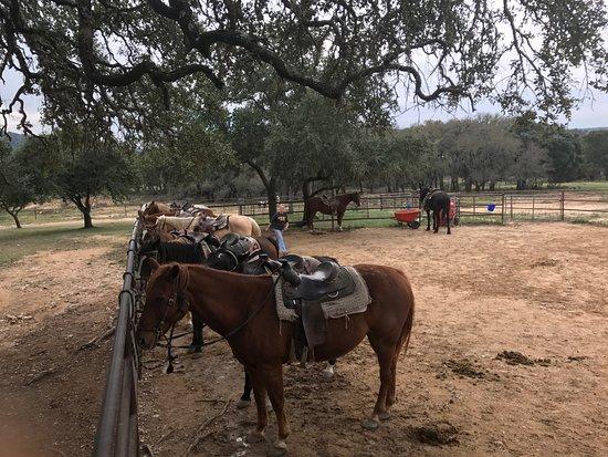 Rancho Cortez Picture