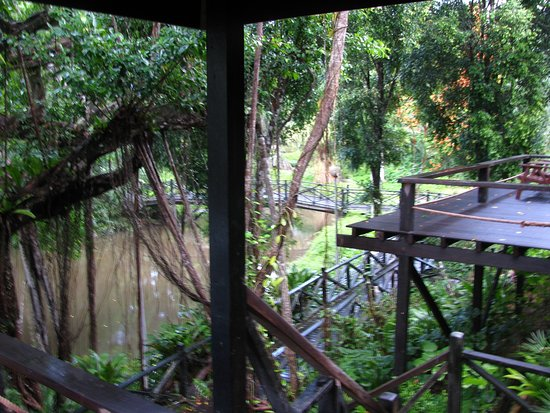 Sepilok, Malaysia: Vistas desde la terraza