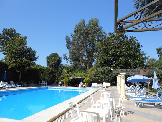 Hotel Delle Palme: The pool is clean and area lovely