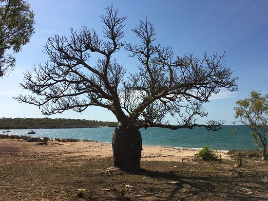 Kalumburu, Australia: Honeymoon Bay
