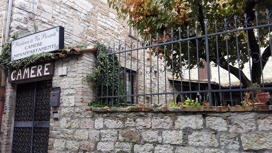 Residenza di Via Piccardi: ingresso lato giardino