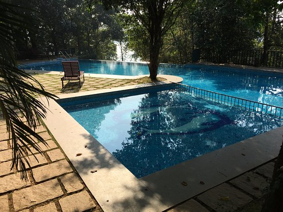 Swimming Pool With The 39 Infinity 39 Section Picture Of Wayanad Silverwoods Kalpetta Tripadvisor