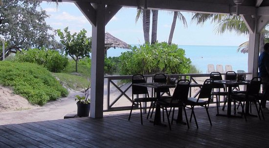 viva wyndham oceanfront all inclusive resort grounds picture of