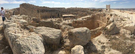 Rabbi Eitan Day Tours: Herodian from the top