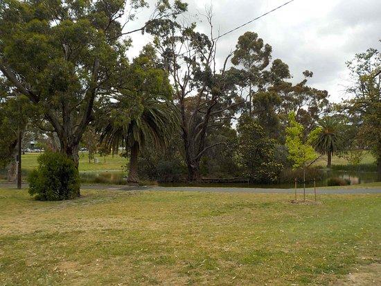 Woodlands Park: The large pond